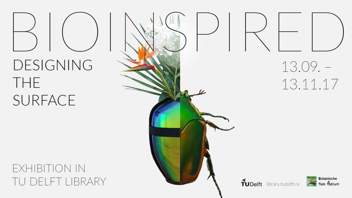 Biomimicry: Being Bioinspired